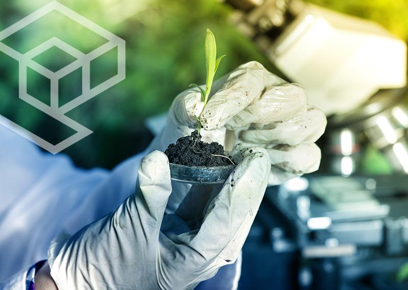 eco-services-2020-28