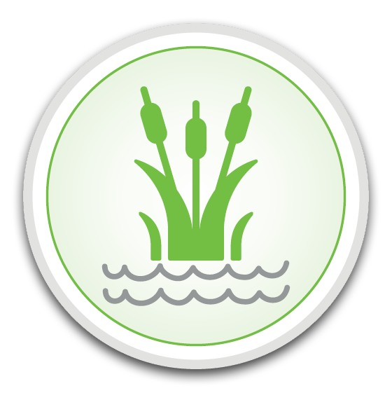 new_icon19-green